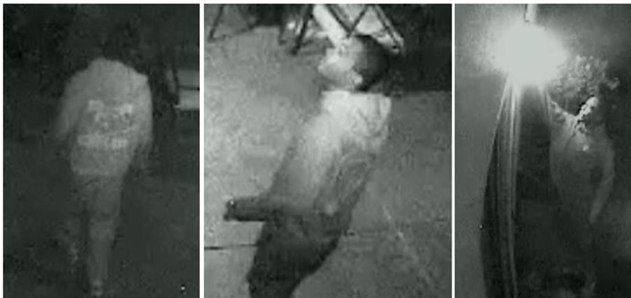"VIDEO: Help catch ""hot prowl"" burglar"