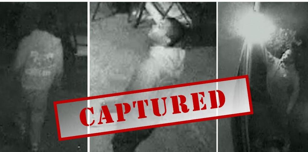 Hot prowl burglary suspect captures