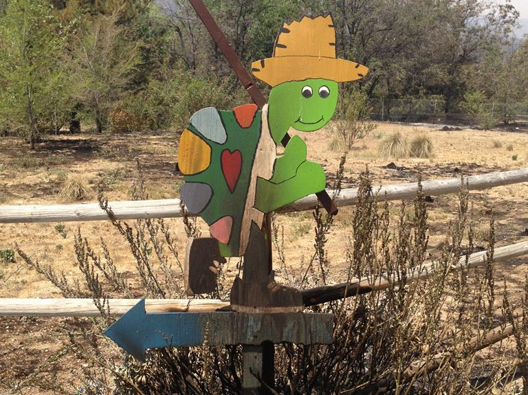 The Painted Turtle sustained a tremendous amount of smoke damage and destruction of the vegetation and land that has created air quality concerns and that is going to require extensive cleanup. (Contributed photo)