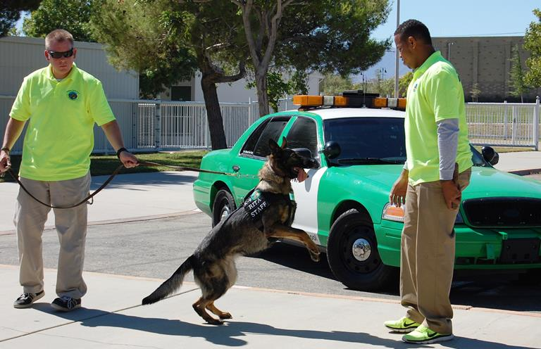 Two-year-old German Shepard Rita (shown with two of her four handlers) is the newest member of The Guidance Charter School  staff.