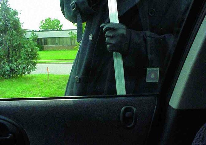 car thief stock