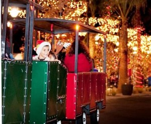 Children are sure to enjoy riding on the holiday train through the festive streets.
