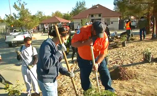 Volunteers take part in a City of Palmdale makeover event at Domenic Massari park last fall. This Saturday, April 26, volunteers will join more than 500 Church members in  painting buildings, landscaping, trash/debris removal, and other beautification activities at Desert Sands Park.