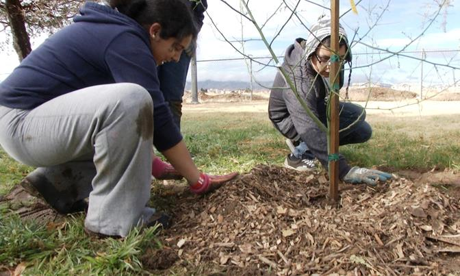 Youth, families and the young at heart are invited to participate in a park beautification at one of Palmdale's most beloved parks.