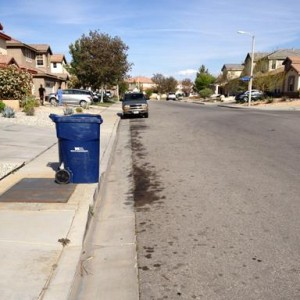 Employees leave the trash bins on the curb all week, and trash blows down the street, Duncan claims.