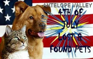 To post a picture of a local lost or found animal during the 4th of July holiday period, visit www.facebook.com/lostonthe4thofjuly.