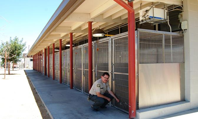 Lt. Raul Rodriguez greets a dog at the Lancaster shelter Wednesday afternoon. Local animal care officials are bracing for an influx of stray animals coming to the shelter after the July 4th fireworks.