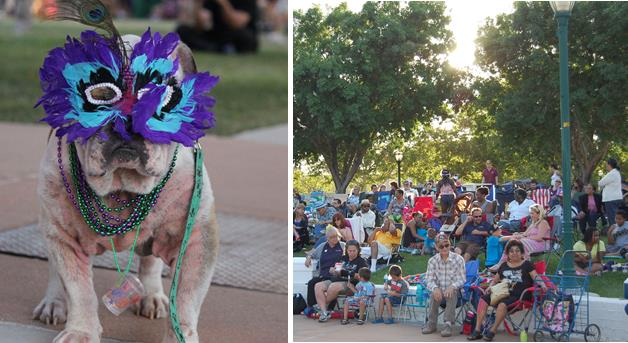 At tonight's TNOTS, there will be a Pawcasso Pooch Parade, where participants may artistically dress up their dogs for a special parade in which prizes will be awarded for the best canine costumes.