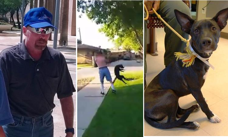 Robert Martin, shown outside the Antelope Valley courthouse Tuesday, is accused of brutally abusing his six-month-old pit bull mix named Daisy on Aug. 8. A portion of the incident was caught on video (see below).