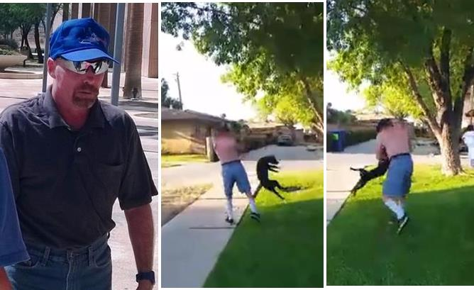Robert Martin was sentenced to five years  formal probation and barred from owning an animal for at least 10 years in connection with an incident caught on video in Lancaster on Aug. 8, when Martin repeatedly punched and then body slammed his puppy Daisy. (View the disturbing video below)
