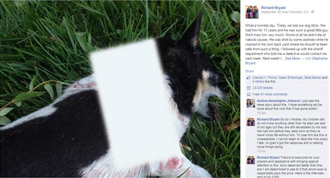 In a Facebook post, dated Sept. 30, Lancaster resident Richard Bryant shared a picture of his deceased dog, Mylo, and claimed the dog had been shot while roaming in the backyard. The graphic portion of the photo has been removed. To view the unedited screenshot, click the image. To view Bryant's Facebook post, click here.