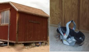 The child was found alone in a shed, suffering from heat exposure and dehydration, and strapped into a car seat.