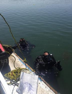 The Orange County Sheriff's Department's Dive Team recovered the body. (OCSD twitter)