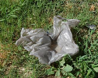 Even a small amount of water on top of a plastic bag that might have blown into your yard can hold enough water for mosquito larvae to thrive, according to the Antelope Valley Mosquito and Vector Control District.