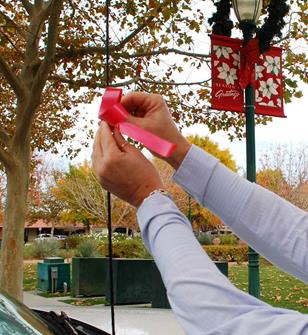 Residents may participate in Palmdale's Tie-One-On campaign by picking up a red ribbon at the city's Neighborhood Services Department and displaying the ribbon on their car antennas in support of 3D month. [contributed]