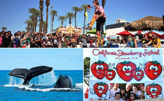 The Riverside County Fair and National Date Festival on Feb. 13, the Festival of the Whales on March 12, and the California Strawberry Festival on May 21 are just three of the fun-filled events on Palmdale's winter/spring bus excursion schedule. [contributed images]