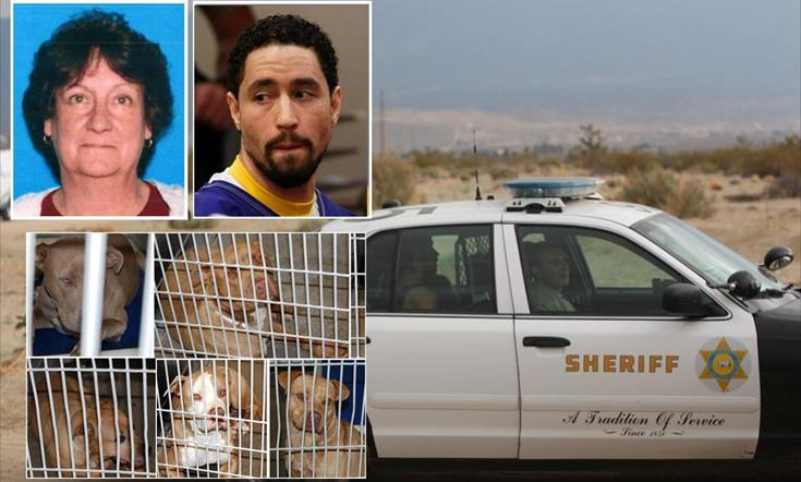 (Inset: Victim Pamela Devitt; Alex Donald Jackson at his sentencing hearing in 2014; five of the eight dogs seized after the attack. Main photo: Jackson sits in the back of a patrol car following his arrest on May 9, 2013.)
