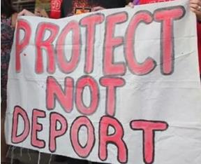 protect-not-deport
