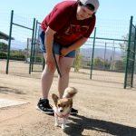 Yellen Dog Park to celebrate one year anniversary this Saturday