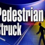 Palmdale man hit, killed by pickup truck
