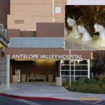 AV Hospital opening wig bank