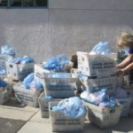 Volunteer opportunities available for Stamp Out Hunger food drive sorting