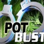 4 illegal pot shops raided in Rosamond, 6 arrested